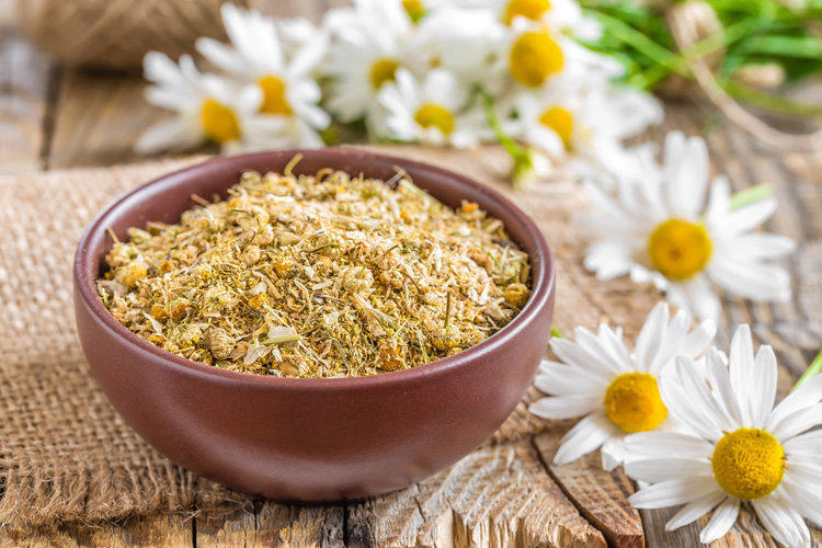Preparing decoctions and chamomile infusions