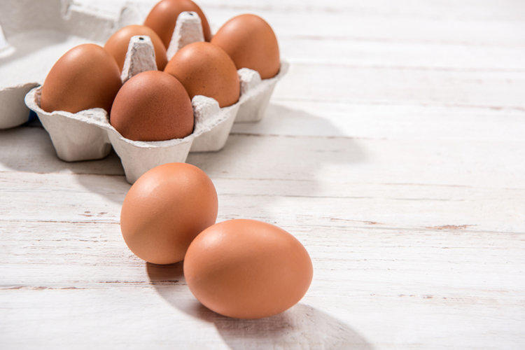 Salmonellosis - what is it?