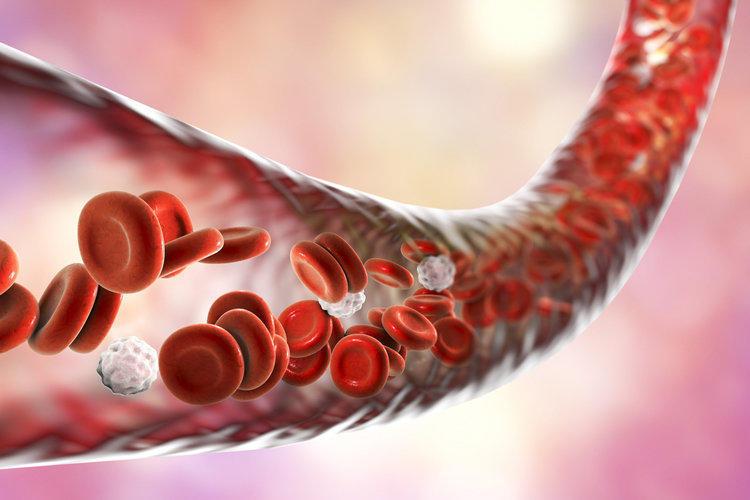 Biochemical blood test: transcript